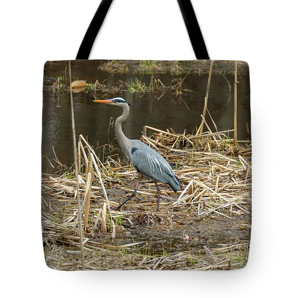 Tote Bag featuring the photograph Posing Great Blue Heron  by Betty Pauwels