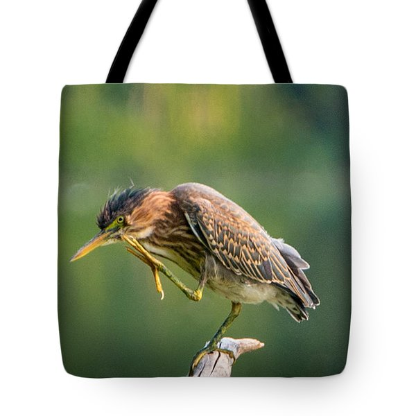 Posing Heron Tote Bag by Jerry Cahill