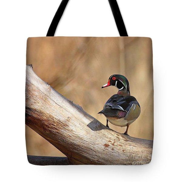 Posing Wood Duck Tote Bag