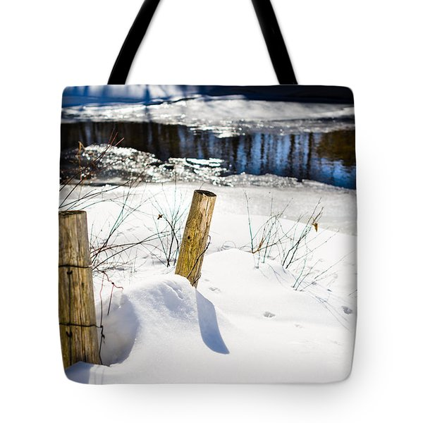 Posts In Winter Tote Bag