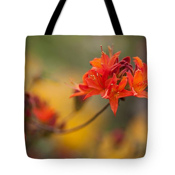 Potential Tote Bag by Mike Reid