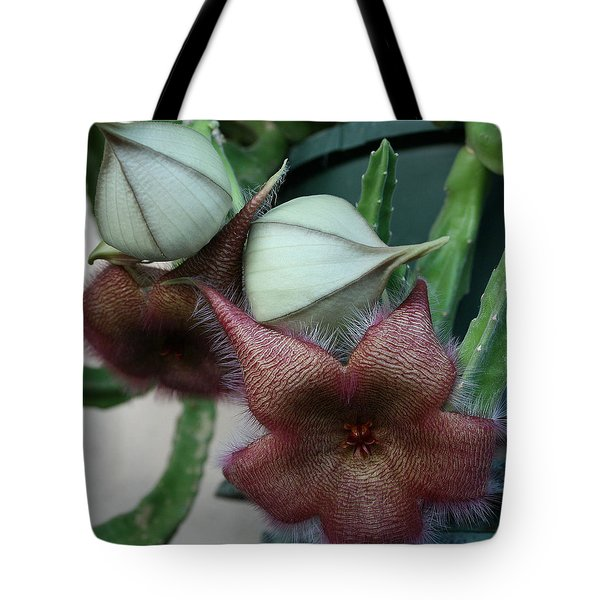 Potted Starfish Tote Bag by Marna Edwards Flavell