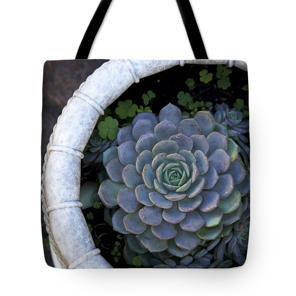 Potted Succulent Tote Bag by Colleen Williams