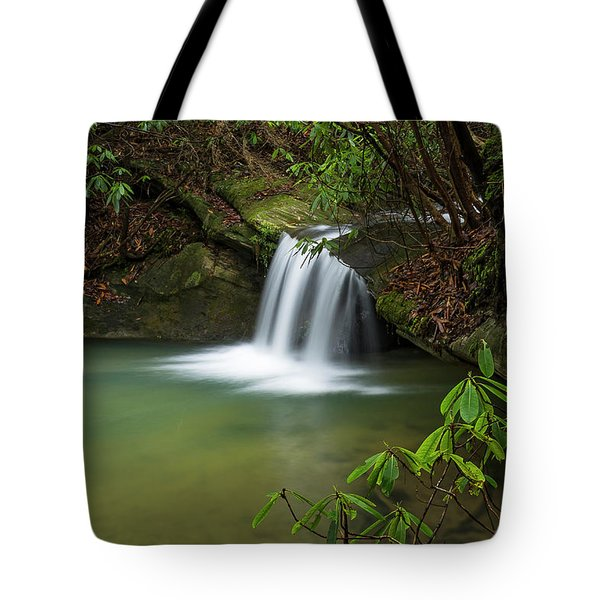 Pounder Branch Falls # 2 Tote Bag