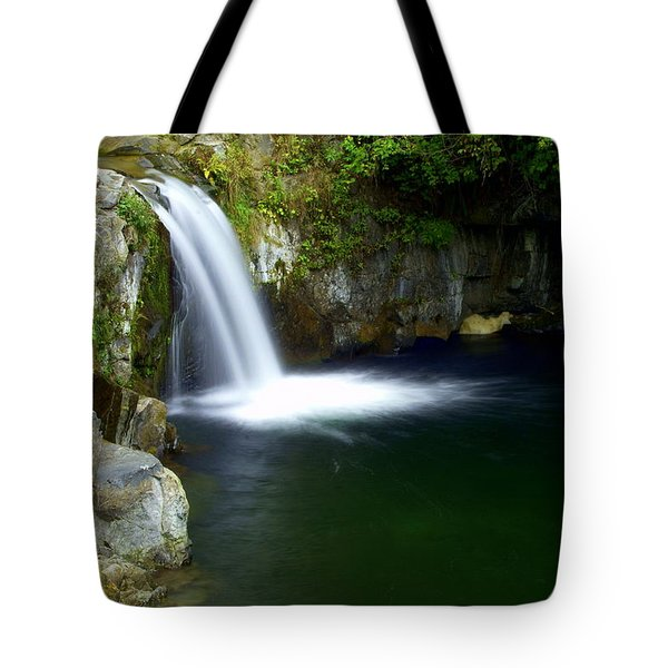 Pour Off Tote Bag by Marty Koch