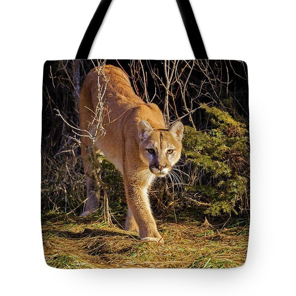 Power And Grace Tote Bag by Jack Bell