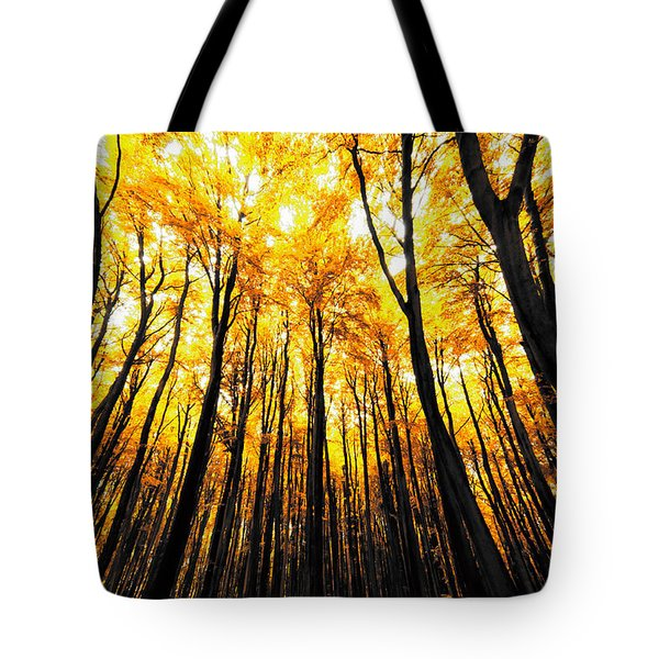Power Of The Sun Tote Bag