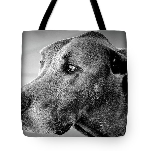 Tote Bag featuring the photograph Powerful Majesty by Barbara Dudley