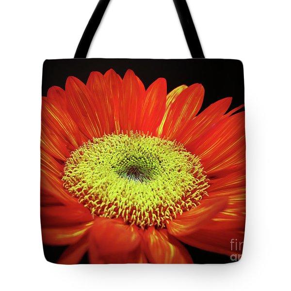 Prado Red Sunflower Tote Bag