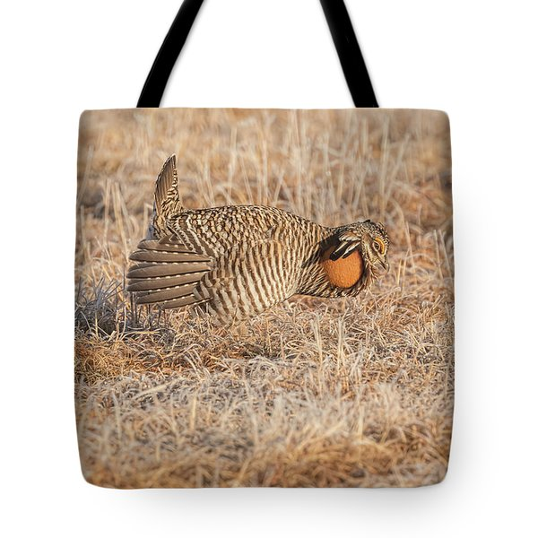Tote Bag featuring the photograph Prairie Chicken 10-2015 by Thomas Young
