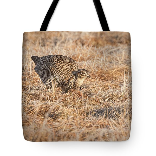 Tote Bag featuring the photograph Prairie Chicken 11-2015 by Thomas Young