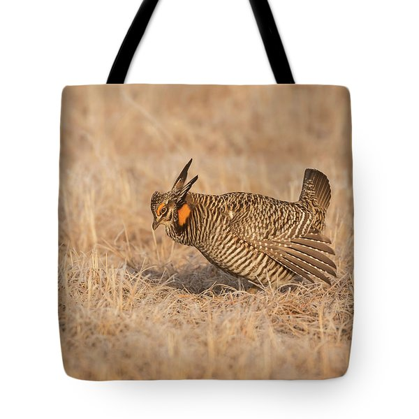 Tote Bag featuring the photograph Prairie Chicken 8-2015 by Thomas Young