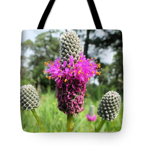 Prairie Clover Tote Bag by Scott Kingery