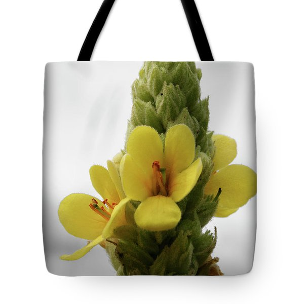 Tote Bag featuring the photograph Prairie Cone by Dylan Punke