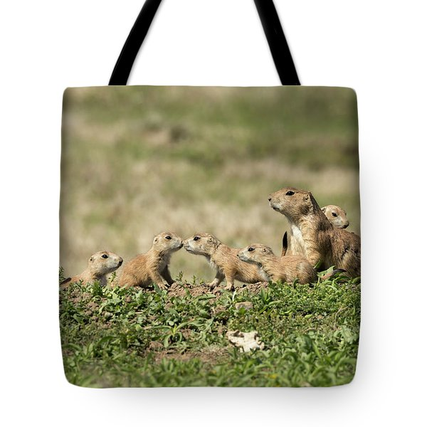 Prairie Dog Family 7270 Tote Bag
