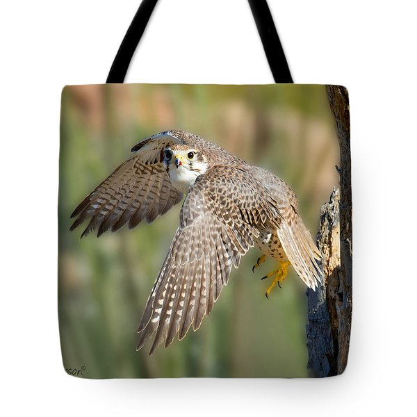 Prairie Falcon Taking Flight Tote Bag
