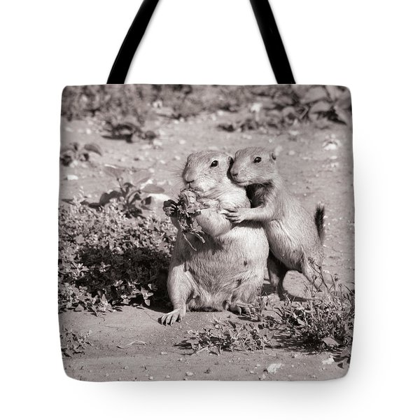 Prairie Love Tote Bag