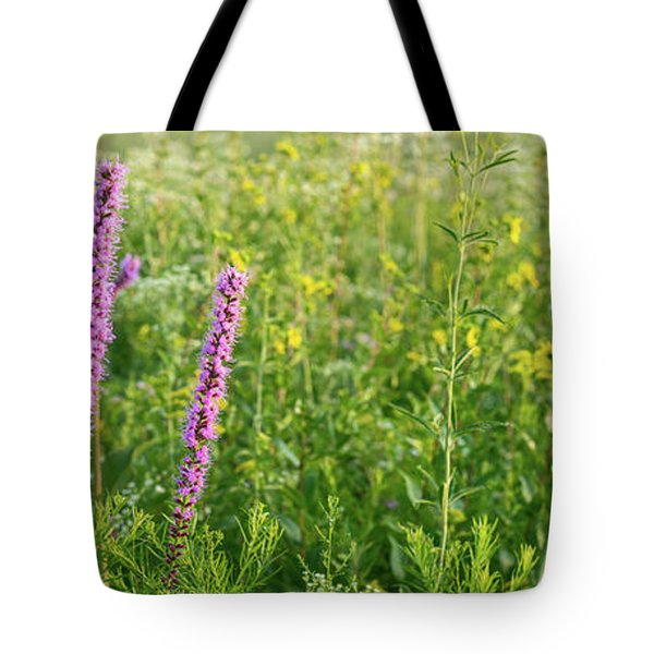 Prairie Panorama Tote Bag