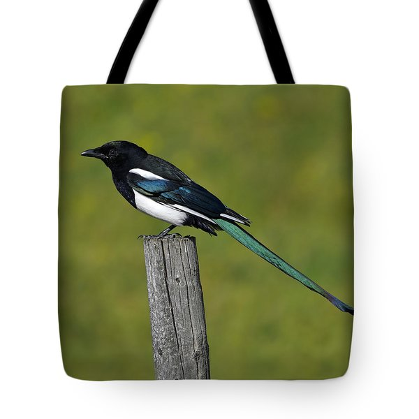 Prairie Perch Tote Bag by Tony Beck