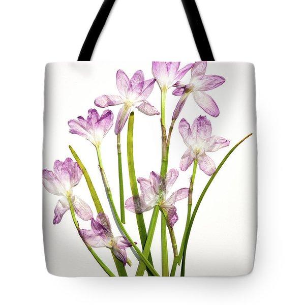 Prairie Rain Lily Tote Bag