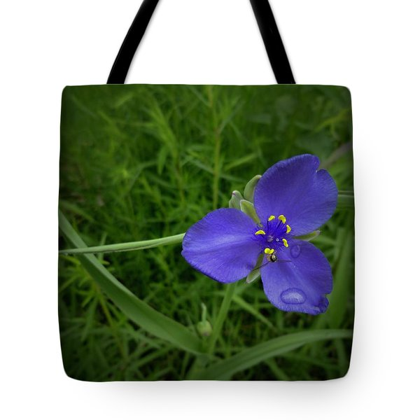 Prairie Rain Tote Bag by Tim Good