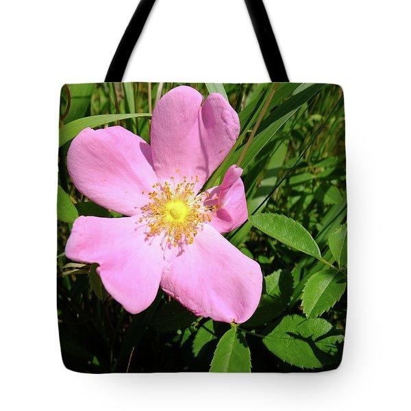 Prairie Rose Tote Bag by Scott Kingery