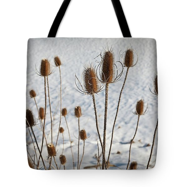 Prairie Seedheads Tote Bag