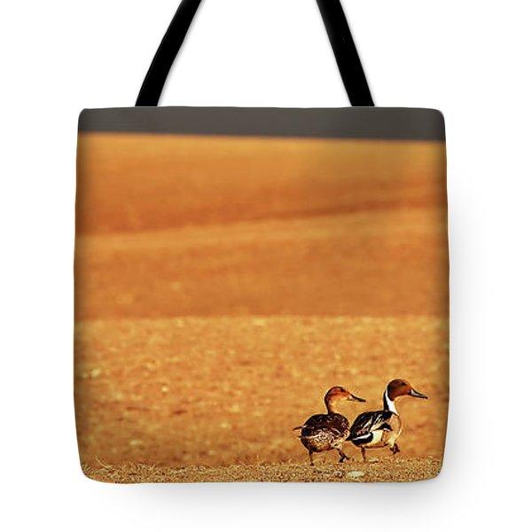 Prairie Storm And Ducks Canada Tote Bag by Mark Duffy