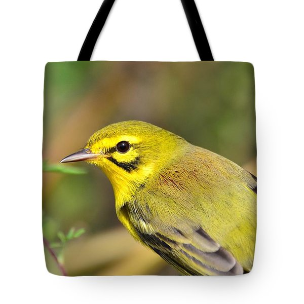 Tote Bag featuring the photograph Prairie Warbler by Kathy Gibbons