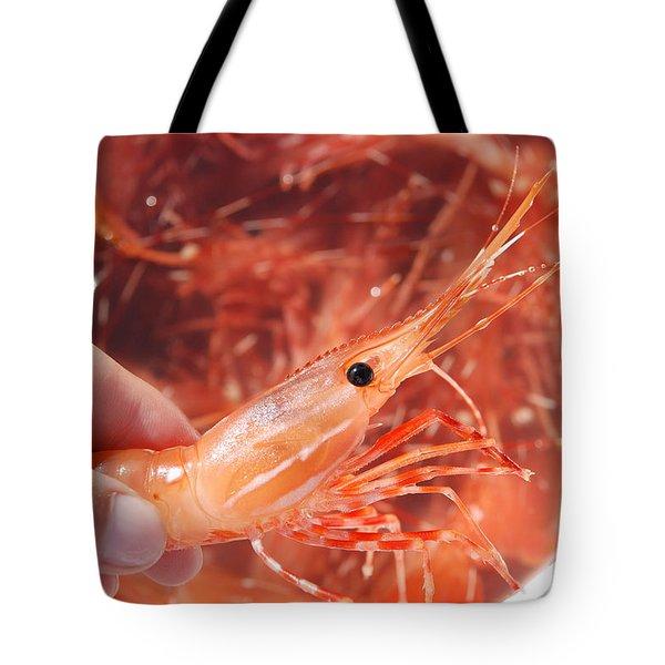 Prawns Tote Bag