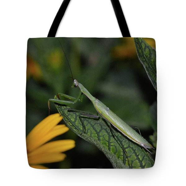 Pray Mantis Dinner Time  Tote Bag