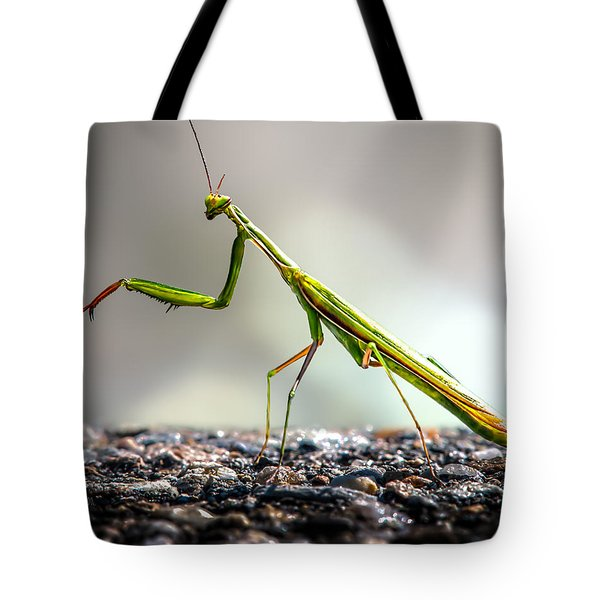 Tote Bag featuring the photograph Praying Mantis  by Bob Orsillo