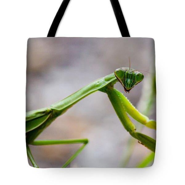 Praying Mantis Looking Tote Bag