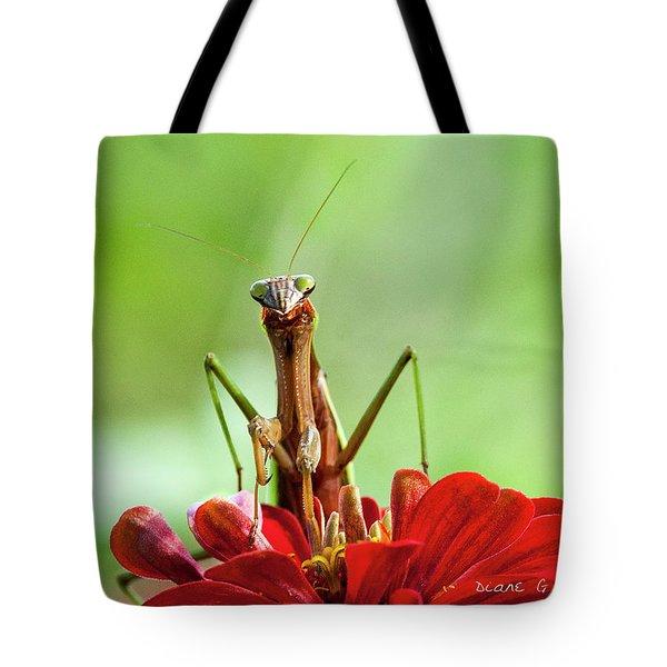 Praying Mantis On Zinnia Tote Bag