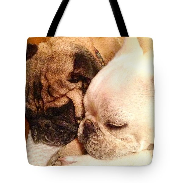 Praying Paws Tote Bag by Russell Keating