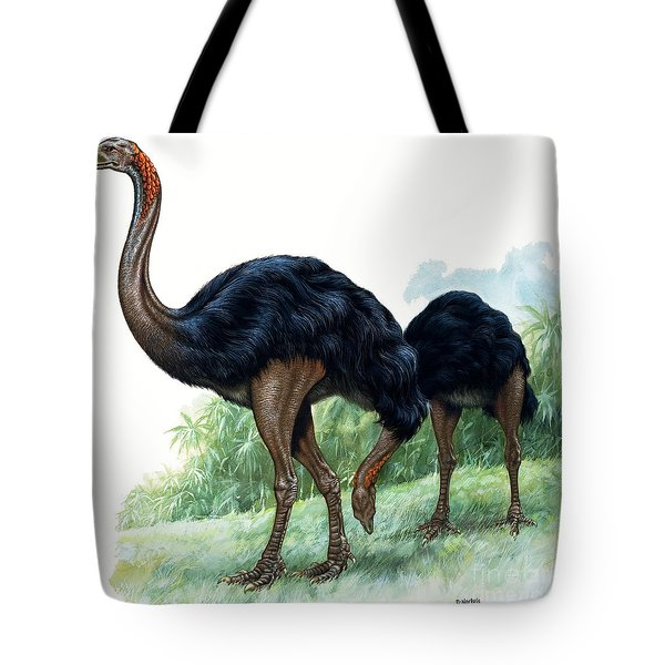 Pre-historic Birds Tote Bag