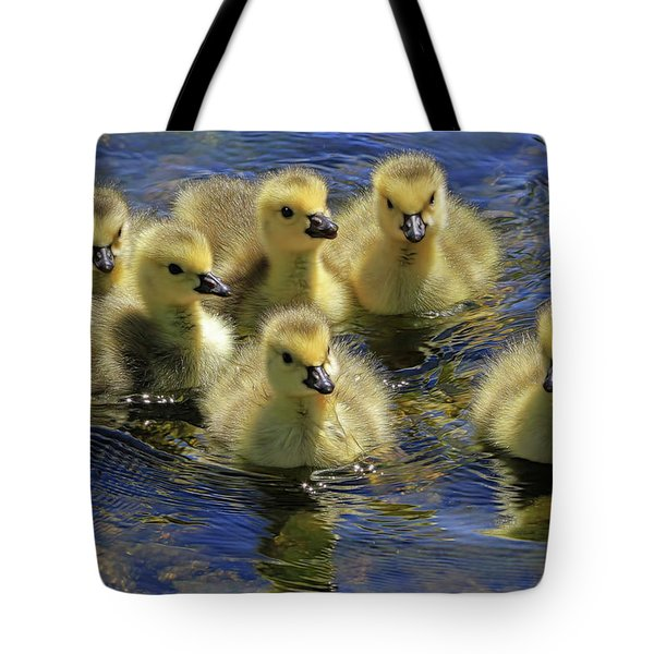 Precious Goslings Tote Bag