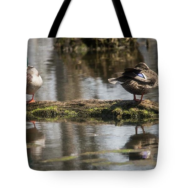 Tote Bag featuring the photograph Preening Ducks by David Bearden