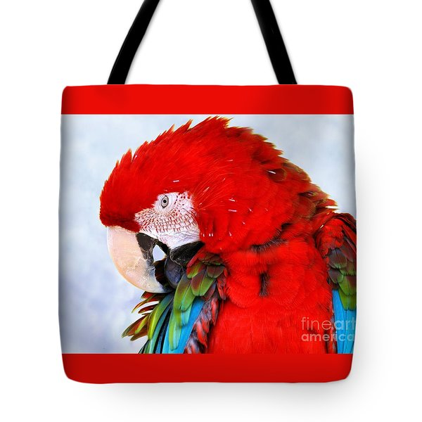 Tote Bag featuring the photograph Preening Macaw by Debbie Stahre