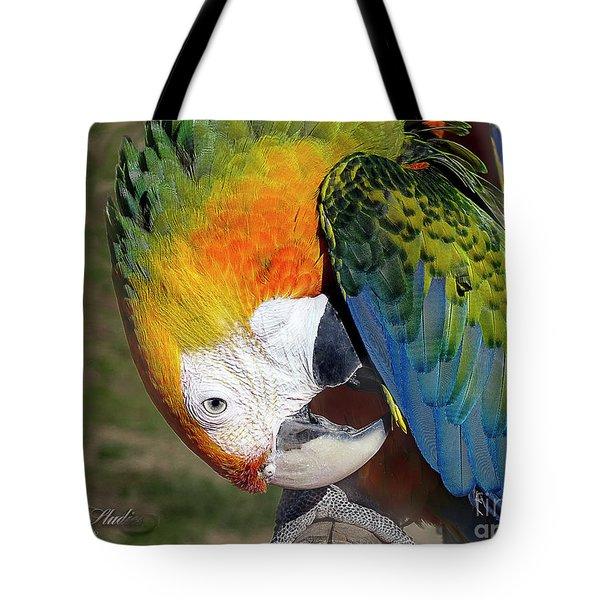 Preening Macaw Tote Bag