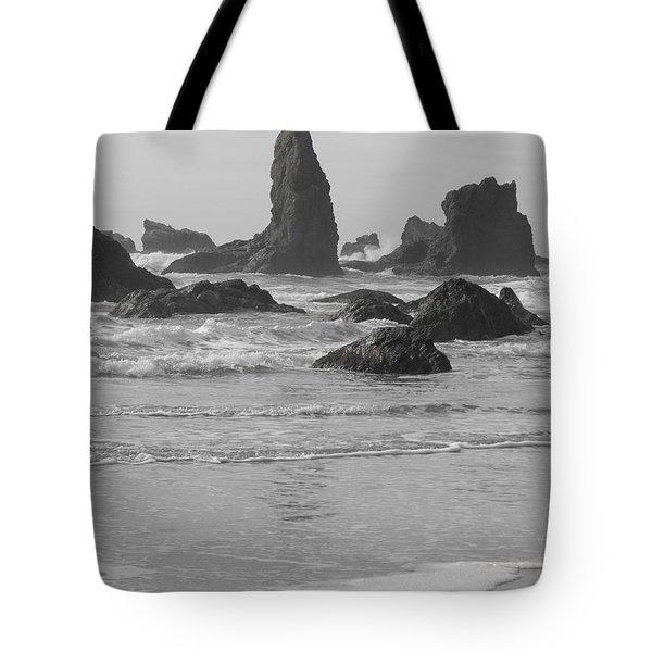 Prehistoric Shore Tote Bag