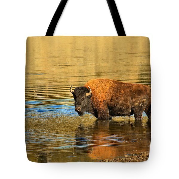 Tote Bag featuring the photograph Preparing To Swim The Yellowstone by Adam Jewell