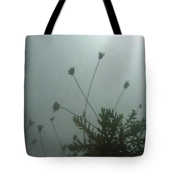 Pressed Daisy Bush Green Tote Bag by Stan Magnan