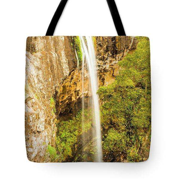 Preston Falls Tasmania Tote Bag