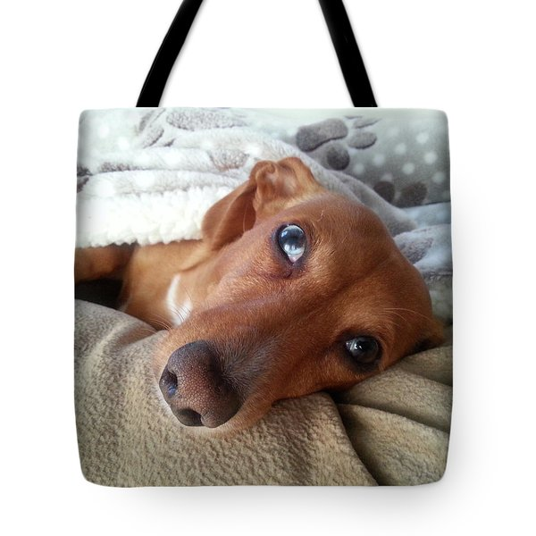 Pretzel By Chera Tote Bag