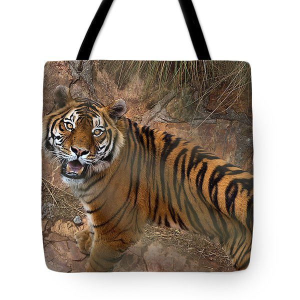 Pretoria Zoo Tote Bag by Steven Richman