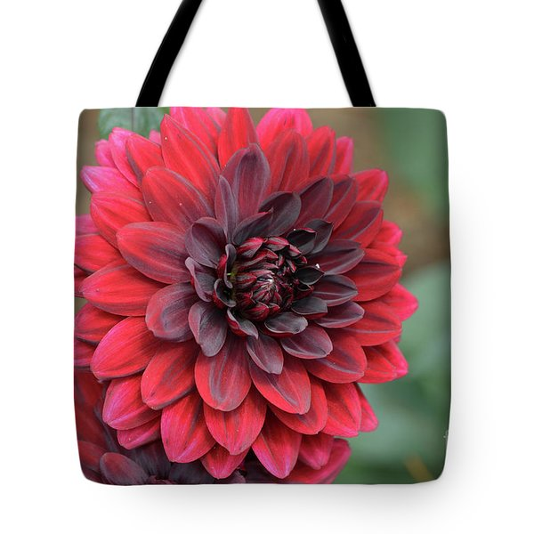 Pretty Blooming Red Dahlia Flower Blossom Tote Bag