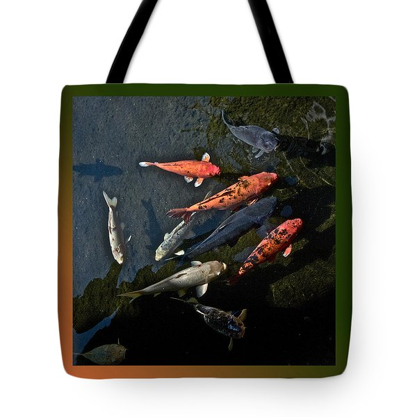 Pretty Fish Tote Bag