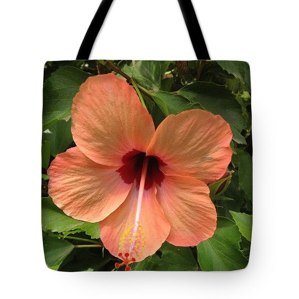 Pretty Flower Found Just Inside Tote Bag