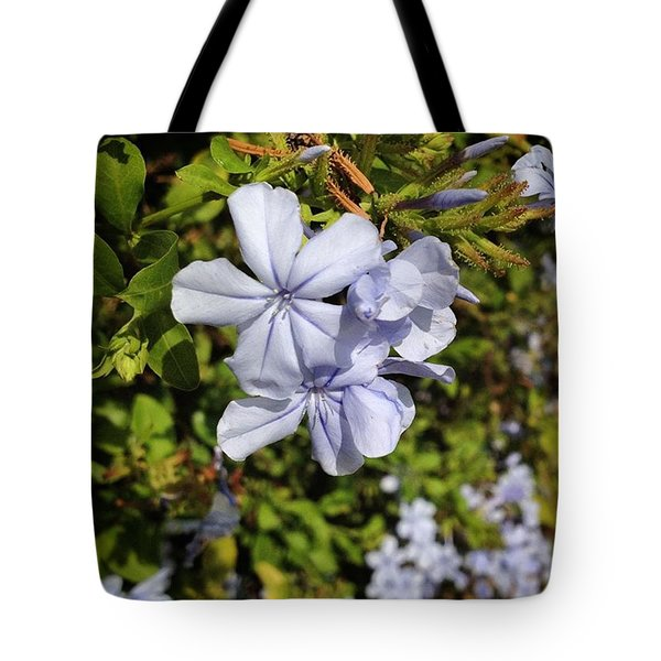 Pretty Flowers Spotted In Gaudi Park Tote Bag